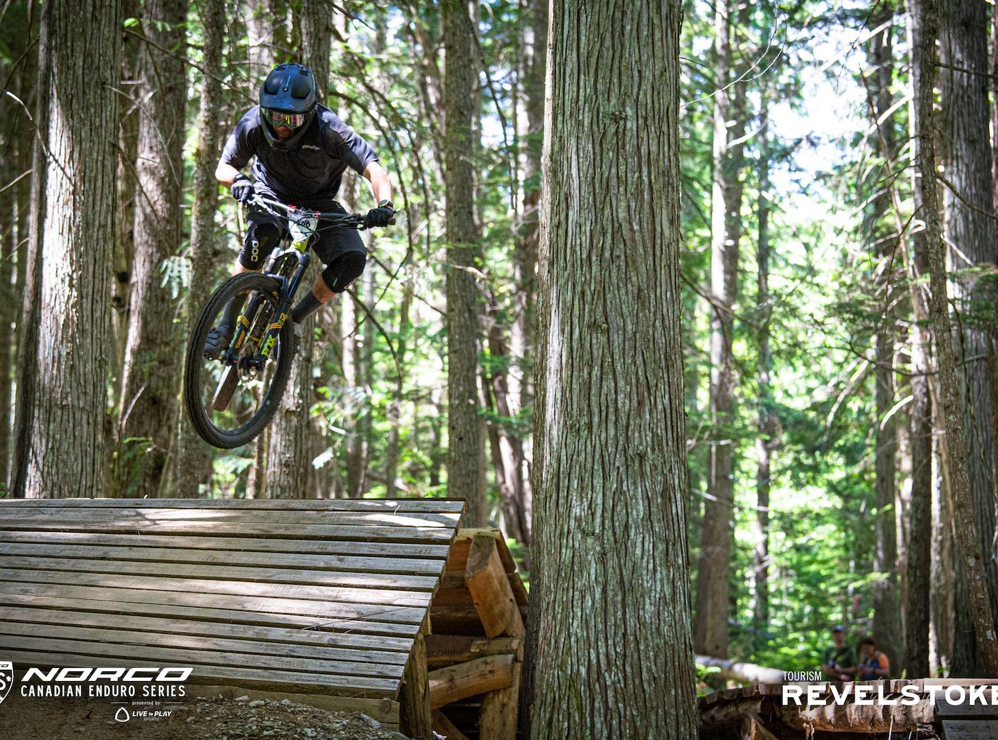 Stay Revy - The Nest